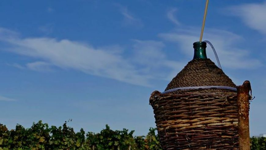 Italian Vineyard Installs Free-Flowing Wine Fountain