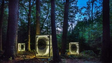 Giant flip books are hiding in the woods of New Hampshire
