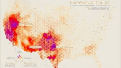 The Best Maps of 2016