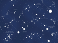 Artist Transforms Sentences From Classic Literature Into Constellations