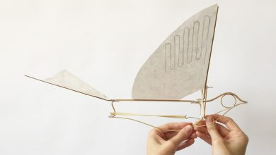 A Wind-Up Bamboo Passenger Pigeon by Haptic Lab