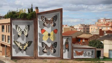 Butterfly Specimen Boxes Painted as Multi-Story Murals by Mantra