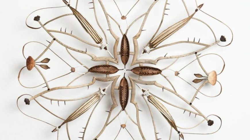 Sculptural mandalas built from found organic specimens by Shona Wilson