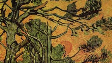 Van Gogh on the Beauty of Sorrow and the Enchantment of Storms, in Nature and in Life