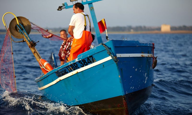 How to Save the Sea: Lessons from an Italian Fishing Community