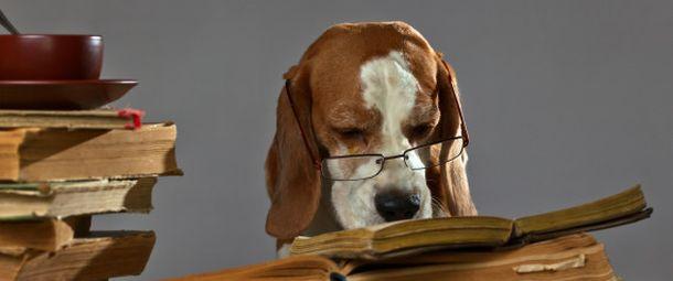 Αυτό είναι το τρικ για να διαβάζετε περισσότερα βιβλία