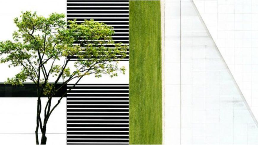 Η συνεχής συνύπαρξη ανάμεσα στη φύση και το μπετόν