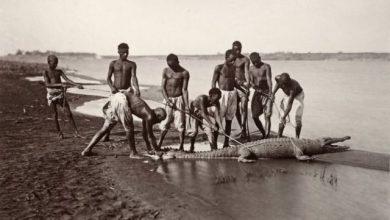 Οι πρωτοπόροι φωτογράφοι του 19ου αιώνα