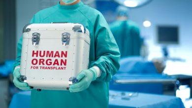Η δωρεά οργάνων ως ηθική πράξη