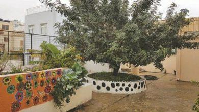 Πρότυπος κομποστοποιητής σε σχολείο ανακυκλώνει οργανικά απόβλητα