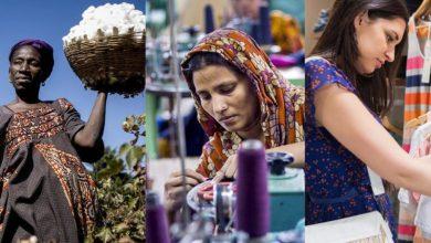 SOFFA, η κουλτούρα της κοινωνικής επιχειρηματικότητας