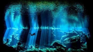 Υδάτινος κόσμος, oι υποβρύχιες εικόνες της χρονιάς