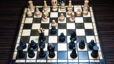 Επιστήμονες ζητούν εθελοντές για ένα σκακιστικό πρόβλημα «κλειδί» για την ανθρώπινη συνείδηση