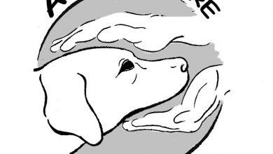 «Εκστρατεία Ενημέρωσης» από το φιλοζωικό σωματείο Animal Care Lefkas