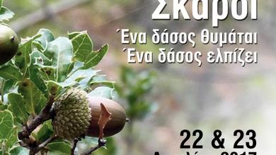 «Σκάροι, ένα δάσος θυμάται, ένα δάσος ελπίζει» εκδήλωση Συλλόγου Επαγγελματιών και προστασίας περιβάλλοντος Νικιάνας