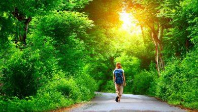Πράσινες Πολιτιστικές Διαδρομές 2017