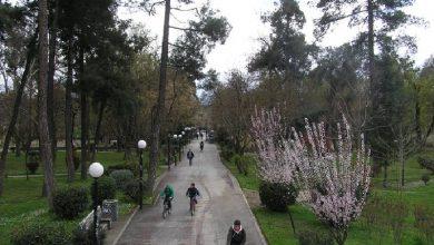 Αυτή είναι η καλύτερη ελληνική πόλη για τους λάτρεις του ποδηλάτου