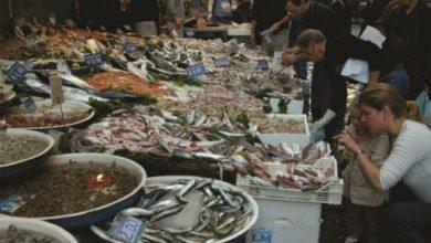 Εσύ τι ψάρια πιάνεις; Παίξε το κουίζ του WWF