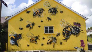 Μάθε από τις μέλισσες