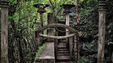 Και ξαφνικά, στο Μεξικό, μέσα στη ζούγκλα βρέθηκαν περίεργα κτίρια και γλυπτά