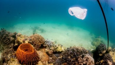 Νορβηγία: Το μεγαλύτερο σκάφος του κόσμου για τη συλλογή πλαστικών από τον ωκεανό