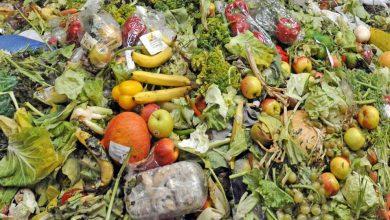 Τα τρόφιμα δεν είναι για τα σκουπίδια