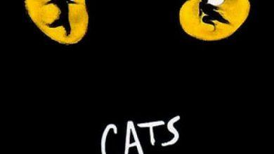 Μιούζικαλ «Cats» από το 8ο Δημοτικό Σχολείο Άρτας