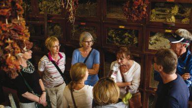 Walking tours ή πώς η Αθήνα θα μπορούσε να έχει τουρισμό 365 μέρες τον χρόνο