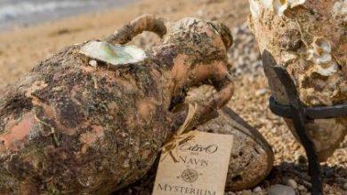 Κρασί από τον πάτο της θάλασσας: Το οινοποιείο που χρησιμοποιεί τον βυθό ως κελάρι