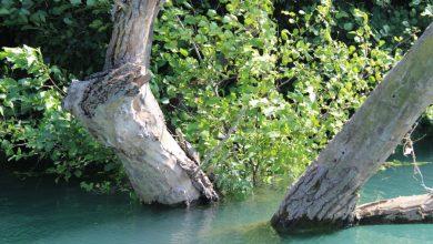 Αχέροντας Ποταμός: Παίζοντας με τη φύση στο αρχαίο ποτάμι των νεκρών