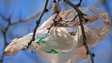 Γιατί η χρέωση της πλαστικής σακούλας είναι κέρδος για όλους
