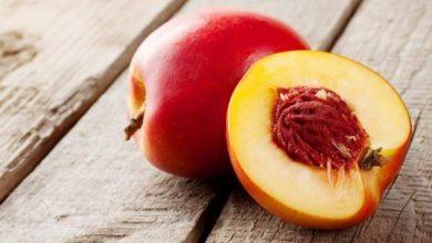 Δωρεάν διανομή φρούτων από την Π.Ε. Λευκάδας
