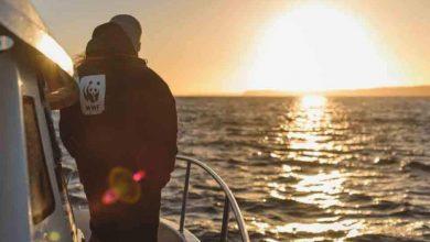 Δυσάρεστα νέα για τη Μεσόγειο