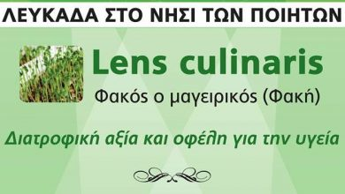 Lens Culinaris – Διατροφική αξία και οφέλη για την υγεία από τη Φαρμακευτική Εταιρεία Ελλάδος