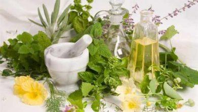Ημερίδα για «Τα Φαρμακευτικά Φυτά από την Αρχαιότητα μέχρι σήμερα»