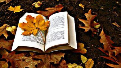 Πέντε βιβλία για το φθινόπωρο