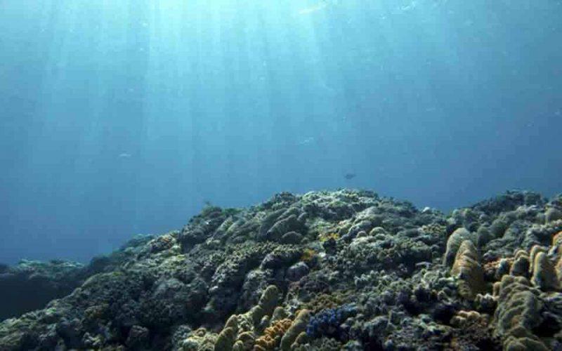 Ένα δισ. ευρώ για τις θάλασσες από ιδιωτικές εταιρείες