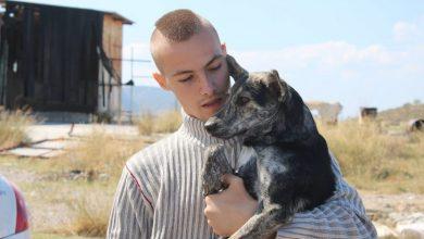 «Greek Animal Rescue», ένα ντοκιμαντέρ-αλληγορία για την έξοδο από την κρίση