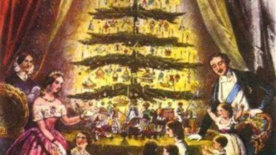 Η περιπετειώδης πορεία του χριστουγεννιάτικου δέντρου: Αντί για έλατο, σήμερα μπορεί να στολίζαμε φτερά κύκνου