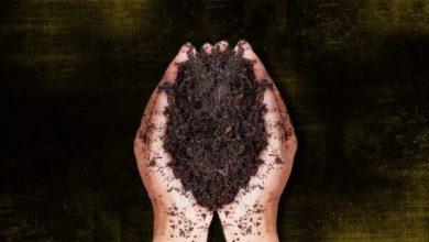 Φτιάξτε τον δικό σας οικολογικό «Μαύρο Χρυσό»
