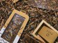 Ο 24χρονος Έλληνας που μετέτρεψε τα φύκια σε… χρυσάφι στη λίστα του Forbes