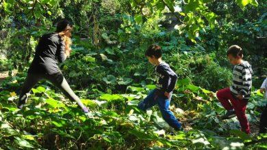 Ένα σχολείο της φύσης στην Ελλάδα