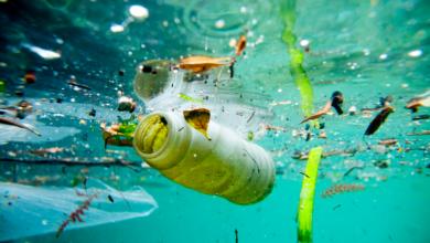 Εκπαίδευση ομάδας αντιμετώπισης θαλάσσιας ρύπανσης από το ∆ηµοτικό Λιµενικό Ταµείο Λευκάδας