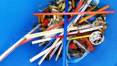 How to banish plastic straws from your life forever