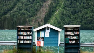 Book towns are made for book lovers
