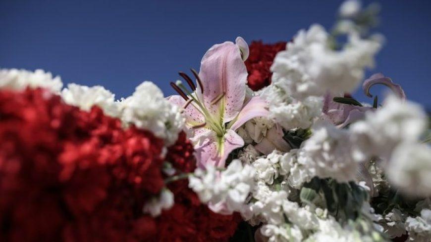 Τα λουλούδια του Επιτάφιου: Η ιστορία, η γκάμα και οι διαφορές με την επαρχία