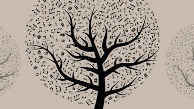 Συναυλία καθηγητών του Μουσικού Σχολείου Λευκάδας