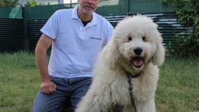 Dog Therapy γιατί… «Τα συναισθήματα του σκύλου θυμίζουν τα συναισθήματα των ηρώων της αρχαιότητας»