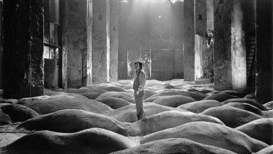 Προβολή της ταινίας «Στάλκερ» του Αντρέι Ταρκόφσκι