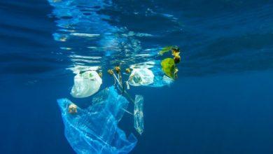 Πλαστική σακούλα στο βαθύτερο σημείο των ωκεανών